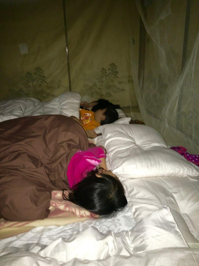 蚊帳の中から見るとこんな感じになる。