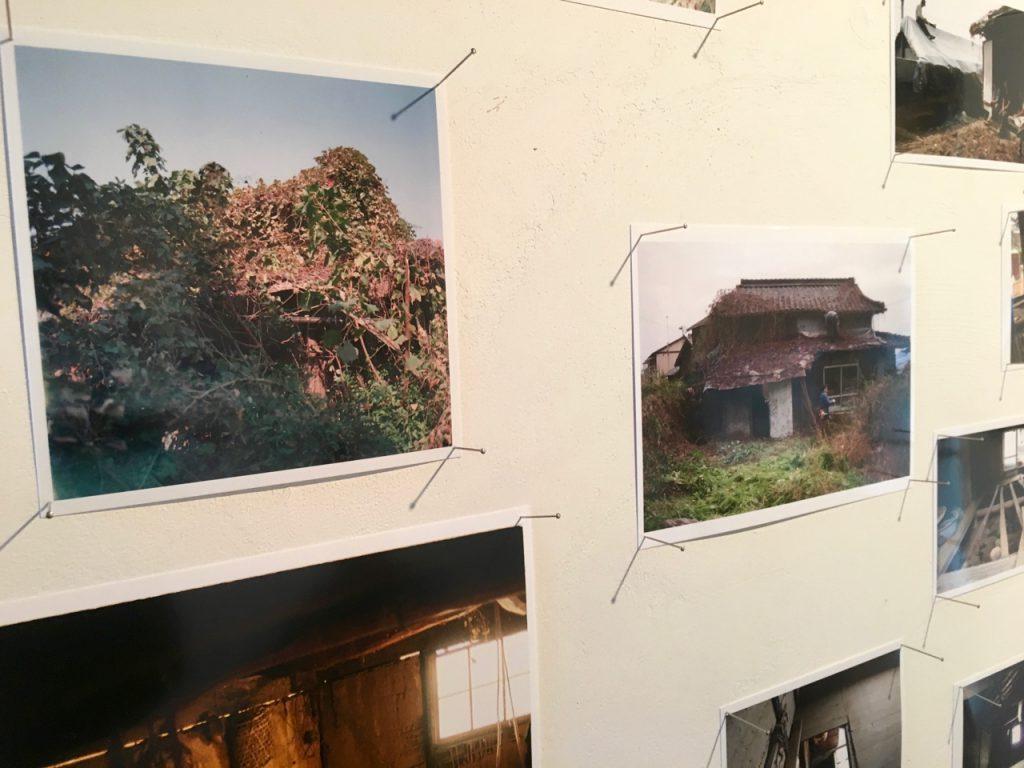 右側に写っているのが、緑を剥いだら出てきた様子。今の男木島図書館の裏側から見た図。